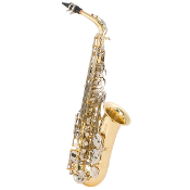 Selmer Student Model AS500 Alto Saxophone